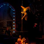 Acrobatic performances by stars of the critically-acclaimed Accused Show: Nightlife on Trial